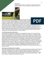 Après le Vélib', l'Autolib' .pdf