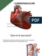Aparato Cardiovascular Vejez