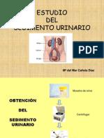 sedimentourinario-110408123158-phpapp02
