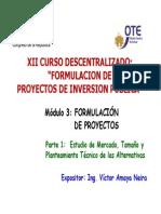 Formulacion de Proyectos Parte 1 Victor Amaya Neira