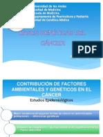 Copia de BASES GENÉTICAS DEL CÁNCER