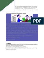 El Dictamen, Trabajo de Auditoria