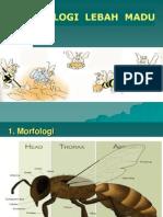 01 Biologi Lebah Madu_trisnowati