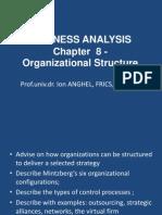 Curs 8 ACCA Organizational Structure 2014