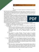 IIIc_TERRA_CRUDA_DEGRADO_DISSESTI_RECUPERO_pagg_63_80