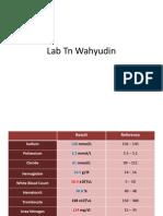 Lab Tn Wahyudin