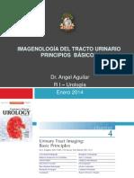 IMAGENOLOGÍA DEL TRACTO URINARIO