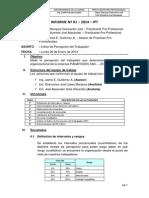 01 INFORME IPT-PANAFOODS