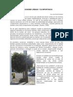 La Dasonomia Urbana