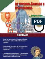 2013 Hormonas Hipotalámicas e Hipofisarias
