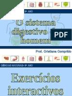 sistemadigestivoexerccios-090516055249-phpapp02