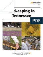 Beekeeping in Tennessee