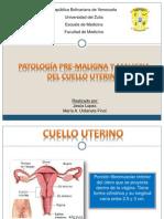 Patologia Pre Maligna y Maligna Del Cuello Uterino