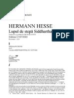 Hermann Hesse - Lupul de stepa - Sidhartha