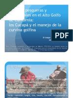 Políticas pesqueras y ambientales en el Alto Golfo de California