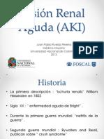AKI 2013-2