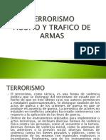 Terrorismo y Acopio de Armas