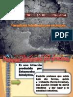 Parasitosis Intestinales Por Protozoos Corregido