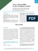 25-macromicrocefalia