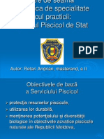 Raport Originalul