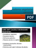 Degradarea Vegetatiei Naturale