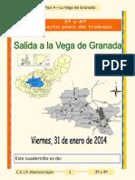 Vega 2013