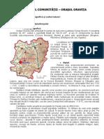 Orasul Oravita Profilul Comunitatii