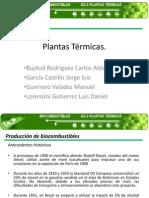 Biocombustibles Final