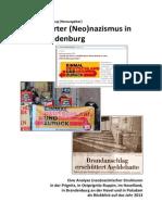 Organisierter_Neonazismus_in_Westbrandenburg_2013.pdf