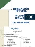 IRRIGACION PELVICA