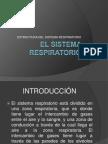El Sistema Respiratorio... Fisio