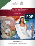 GUÍA.PRIMERA.SESIÓN.ORDINARIA.CTE.2013.pdf_ (1)