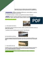 A poluição_resumo