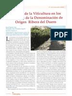 Historia de la Viticultura en los Territorios de la Denomi…