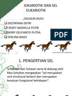 Sel Prokariotik dan Eukariotik