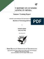MINDA Project Report