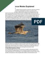 DSLR Autofocus Modes Explained
