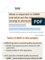 What is Important in Cmmi