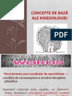 Kinesiologie -Curs 3