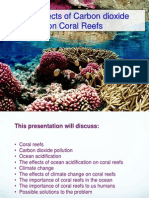 The effects of Carbon Dioxide on coral Reefs