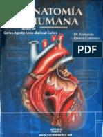 Tratado de Anatomía Humana - Quiroz (Tomo II)