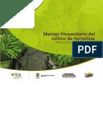 Cartilla Hortalizas Ica Final 130731144114 Phpapp01