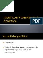 IDENTIDAD Y VARIABILIDAD GENÉTICA