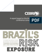 Brazil's Risk Exposure in a More Challenging Global Economic Environment