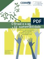 O Brasil e a agenda da sustentabilidade