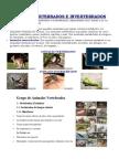 Animales Vertebrados e Invertebrados, Dg 2014