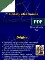 23.Licitaţii+electronice