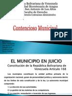 El Municipio en Juicio