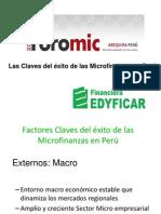 Ana Maria Zegarra Factores Criticos de Exito (1)