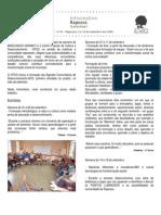 Informativo Raposos Sustentável - Ano 1 - nº 1